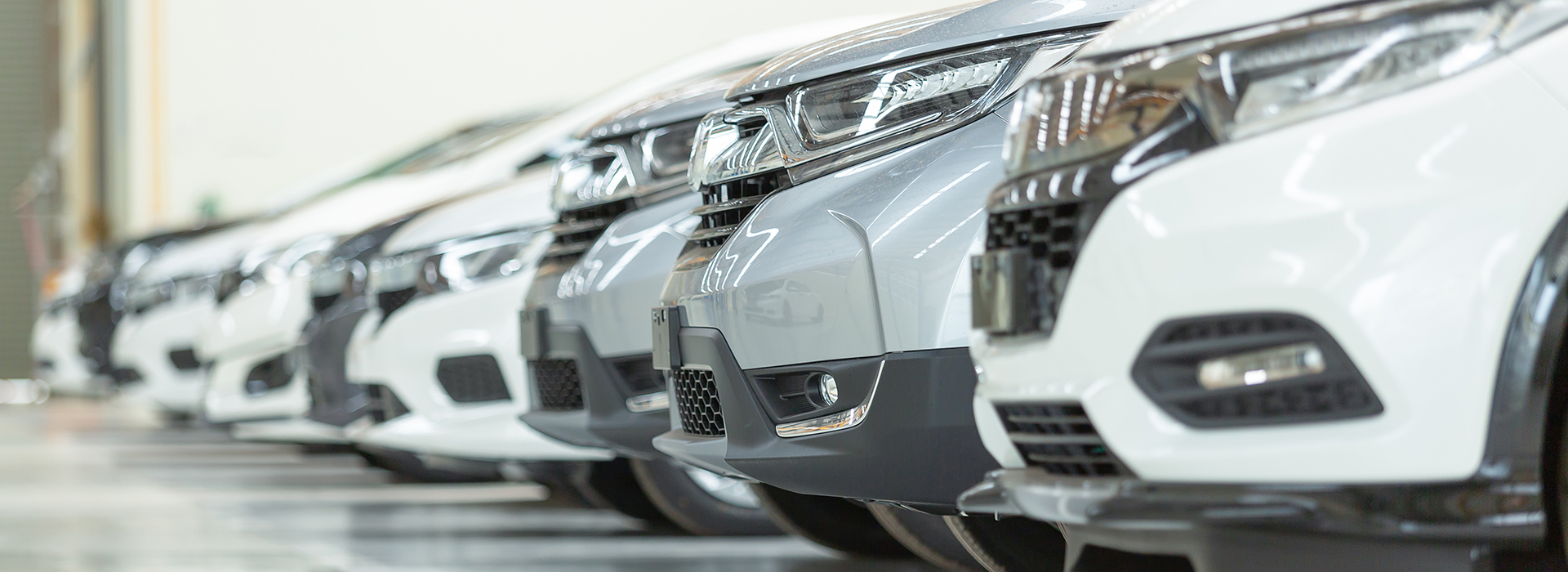 How to buy a ca from Motus Auto Auctions
